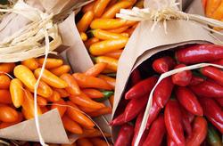 Chili-Pflanzen bei Lubera kaufen