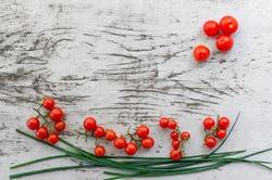 Wildtomaten Pflanzen bei Lubera kaufen