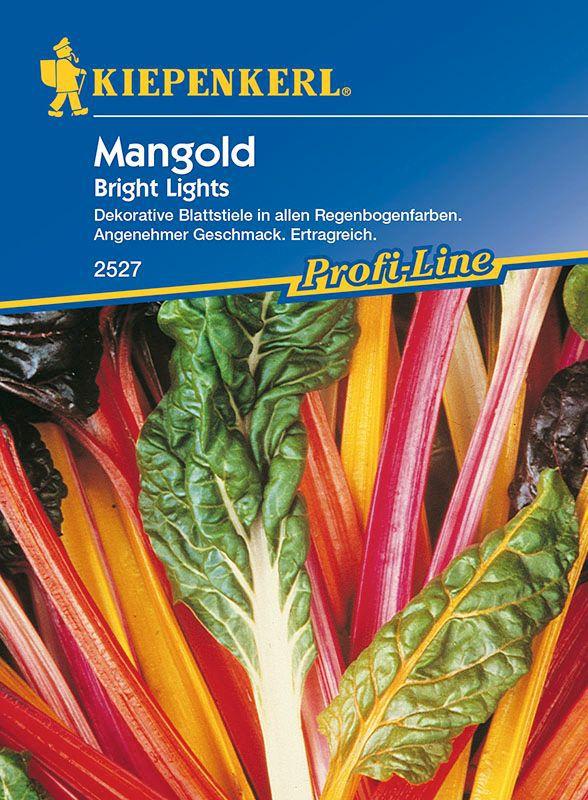 Mangold Bunter Mangold Bright Lights Beta Vulgaris Var Vulgaris