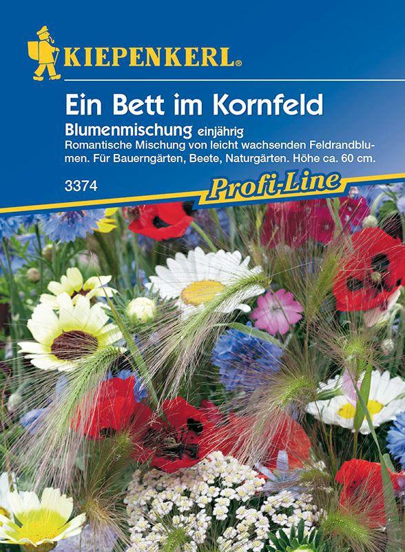 """FINGERHUT  bunte Mischung /""""Digitalis purpurea/"""" Bauerngarten romantisch"""