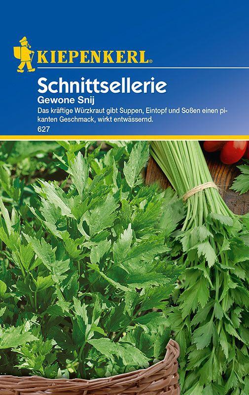 Lieblings Sellerie: Schnittsellerie, Apium graveolens var. secalinum: Lubera.de #ZF_96