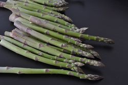 Asparagus plants from Lubera