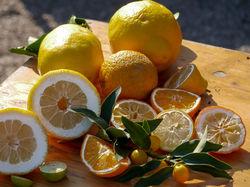 Citron Lubera