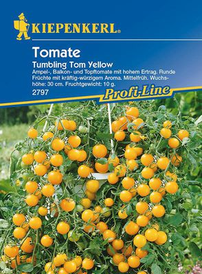 Tomaten: Tumbling Tom Yellow, Lycopersicon lycopersicum
