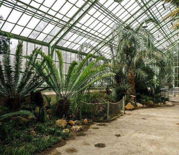 Der Botanische Garten Schonbrunn Pflanzenpalaste Der Kaiser