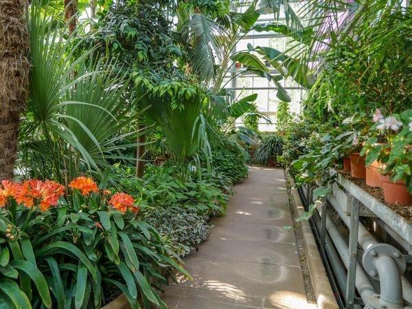 Der Botanische Garten Potsdam Garten Der Vielfalt In Sanssouci
